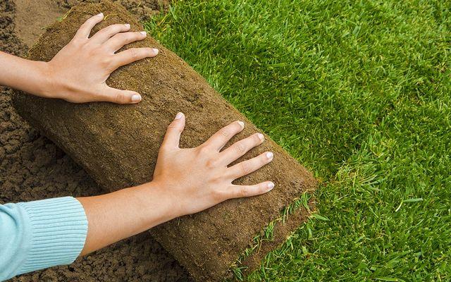 Artificial grass installation cost