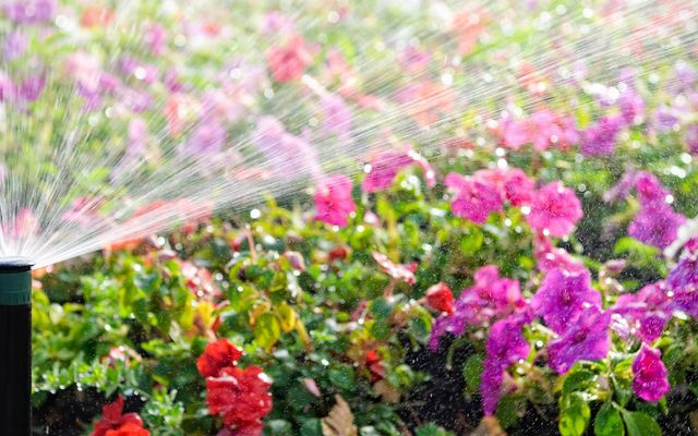 Sprinkler systems cost