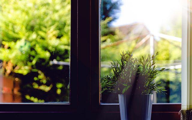 Window seal repair cost