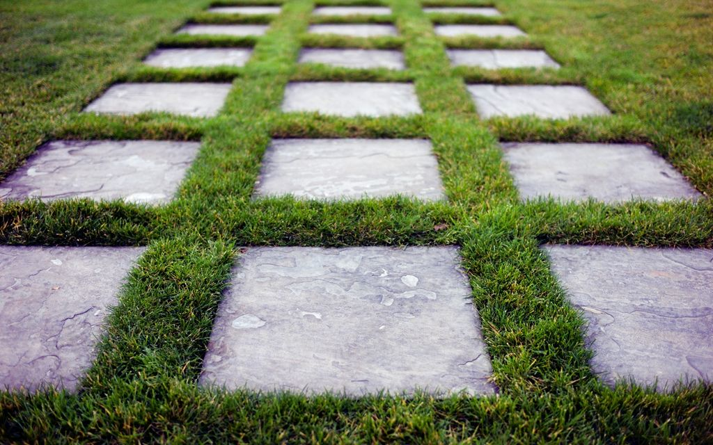 Photo of grass with concrete steps