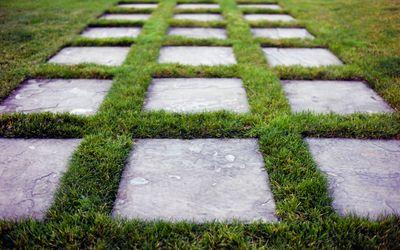 Grass with concrete steps