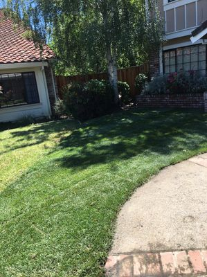 J&G landscape service Martinez, CA Thumbtack