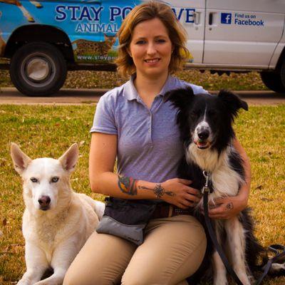 Stay Positive Animal Training Denton, TX Thumbtack