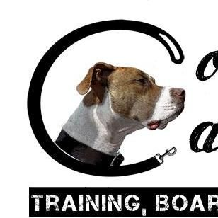 Complete Canine Training, Boarding & Behavior Shaping Solon, OH Thumbtack