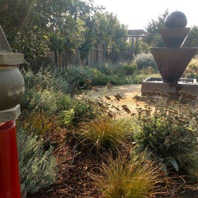 Alexander Pacific Landscape & Building co. Pescadero, CA Thumbtack