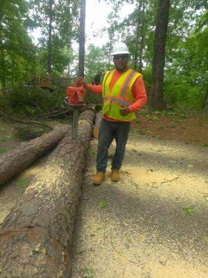 Zamor's Tree Expert Pelham, AL Thumbtack