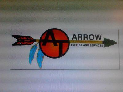 Arrow Tree and Land Services Naples, FL Thumbtack