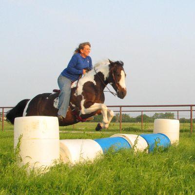 Summer 2016 Nose to Tail Horse Course Aubrey, TX Thumbtack