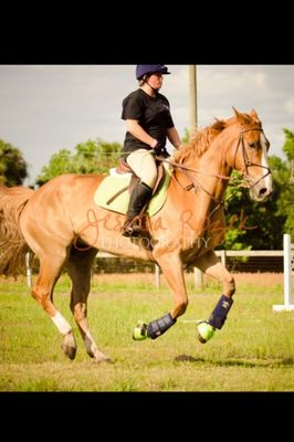Flying Changes Equestrian Center Oviedo, FL Thumbtack