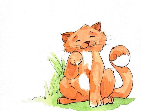 Children's Book 'Deedums the Cat'