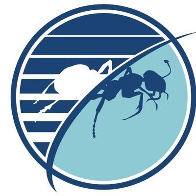 Budget Pest Control, Inc. Pittsburgh, PA Thumbtack