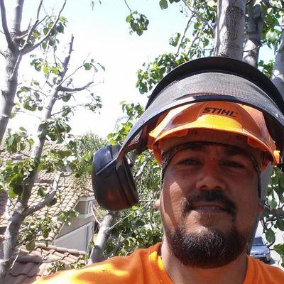 TREE KICKERS TREE SERVICE San Jacinto, CA Thumbtack
