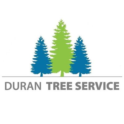 Duran Tree Service Beaverton, OR Thumbtack