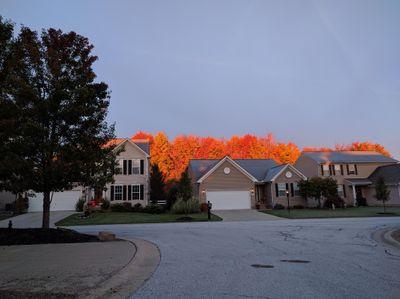 Autumn Reflections Painting Kent, OH Thumbtack