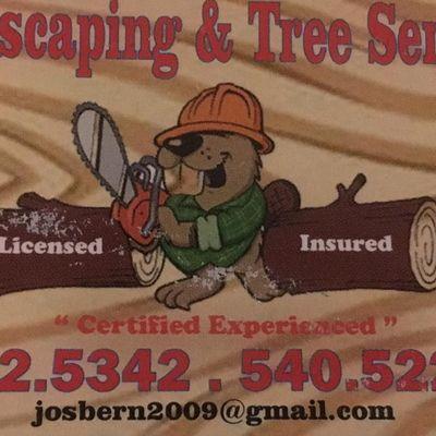 DAN'S LANDSCAPING & TREE SERVICE Culpeper, VA Thumbtack