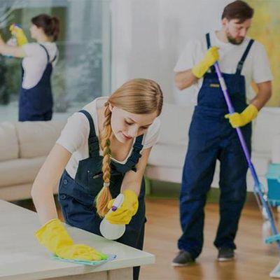 Mint Cleaning & Household Services Hazel Park, MI Thumbtack