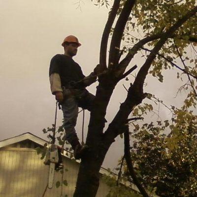 C&B Arbor Care and Land Maintenance North Highlands, CA Thumbtack