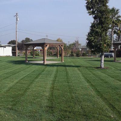 Ortiz Lawn Care Modesto, CA Thumbtack