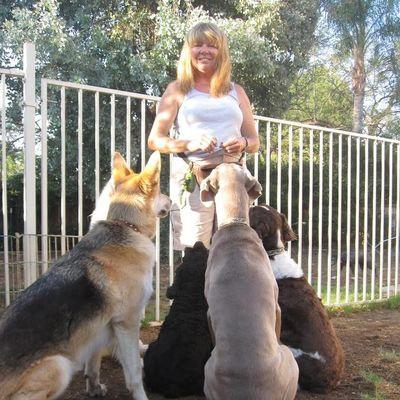 Canine Companions Family Pet Services Yucaipa, CA Thumbtack