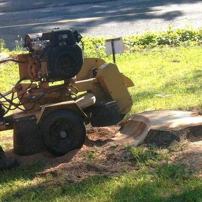 Mountain View Landscaping & Sons LLC Torrington, CT Thumbtack