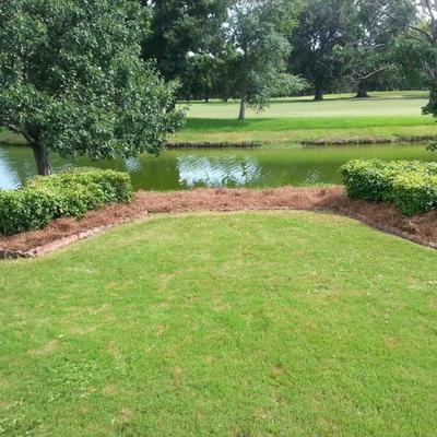Prestigious Lawns Montgomery, AL Thumbtack