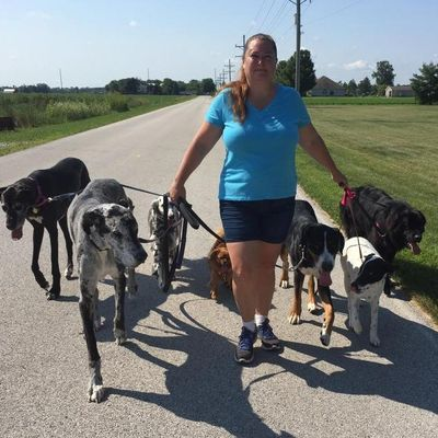 Talk Dog Toledo, LLC. Woodville, OH Thumbtack