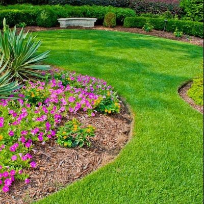 Landscaping Santa Ana, CA Thumbtack