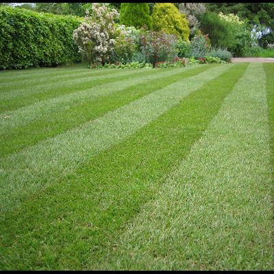 Kremer lawn care & landscaping Massillon, OH Thumbtack