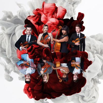 Classern String Quartet Orlando, FL Thumbtack