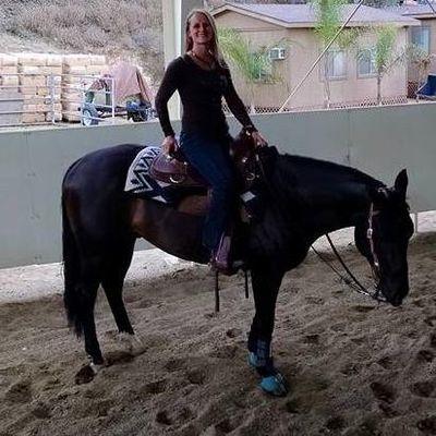 Simon Horsemanship Vacaville, CA Thumbtack