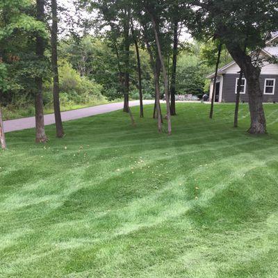 Weber's Lawn & Landscape Rogers, MN Thumbtack