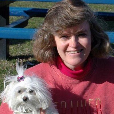 Alternative Canine Training, LLC Royal Oak, MI Thumbtack