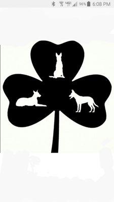 Dilis Dog Academy Carpentersville, IL Thumbtack