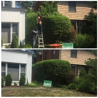 Rolling Green Lawn Care Rochester, MI Thumbtack