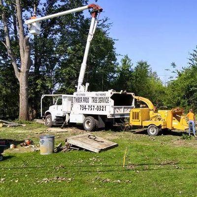 Timber Pros Tree Service Newport, MI Thumbtack