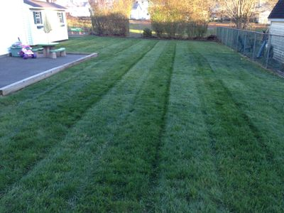EW Landscaping LLC Union, NJ Thumbtack