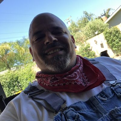 Mike Molloy Modesto, CA Thumbtack