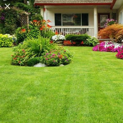 Northwoods Lawn and Landscape Llc Saint Paul, MN Thumbtack