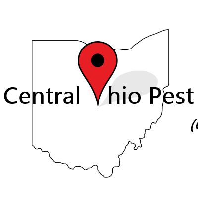 Central Ohio Pest Solutions Columbus, OH Thumbtack