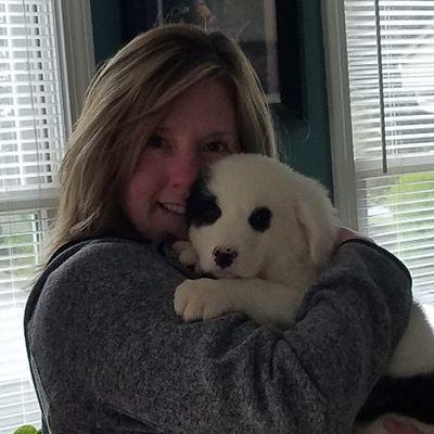 Paws N' Learn Dog Obedience Raynham, MA Thumbtack