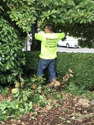 Roberto's Landscape & Maintenance, LLC Mcminnville, OR Thumbtack