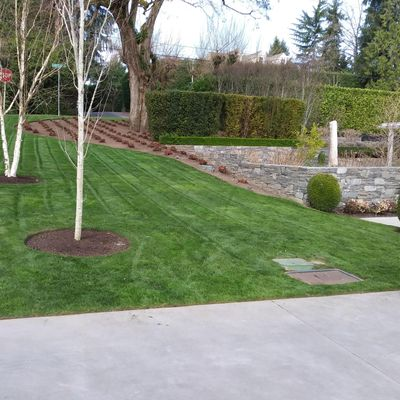 Continental Yard Care and Fence Federal Way, WA Thumbtack