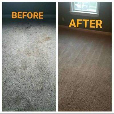 Castaneda carpet care Downers Grove, IL Thumbtack