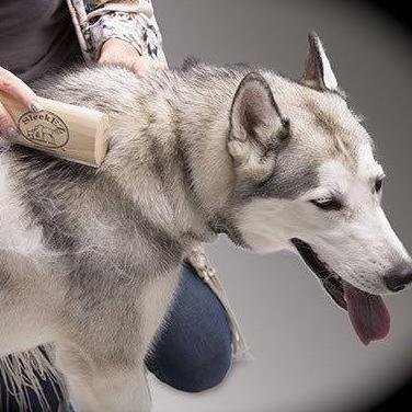 Mobile Pet Spa Beverly Hills, CA Thumbtack