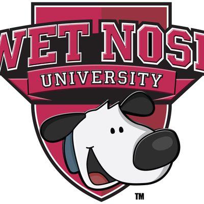Wet Nose University - Dog Training Tampa Tampa, FL Thumbtack