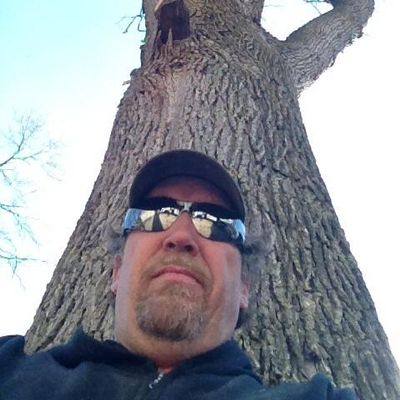 Baumann Tree, LLC Fenton, MO Thumbtack