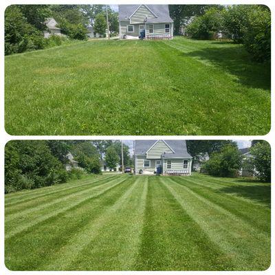 Mad Dog Lawn Care n property maintenance Fort Wayne, IN Thumbtack