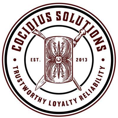 Cocidius Solutions Tacoma, WA Thumbtack