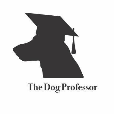 The Dog Professor LLC Charlotte, NC Thumbtack