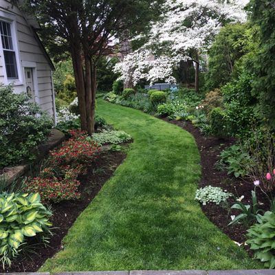 Sam's Landscaping Port Chester, NY Thumbtack